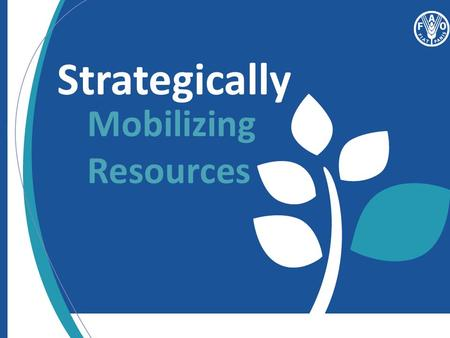 Strategically Mobilizing Resources. Day 2: Session 4 Overview.