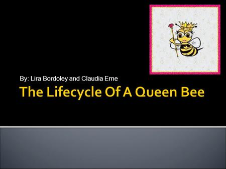 By: Lira Bordoley and Claudia Erne. 2 Metamorphosis of the Queen Bee EggHatches on Day 3 Larva (Several Moltings)Day 3 - Day 8.5 Queen Cell capped~Day.