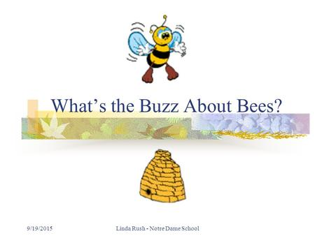 9/19/2015Linda Rush - Notre Dame School What's the Buzz About Bees?