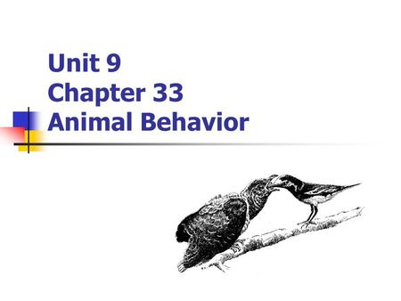 Unit 9 Chapter 33 Animal Behavior. What is Behavior? Behavior: A response to a stimulus Stimulus: An environmental change that directly influences the.