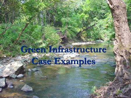 Green Infrastructure Case Examples. Many components can make up a GI strategy Green Infrastructure Strategy Describing Cores, Hubs Protection and Restoration.