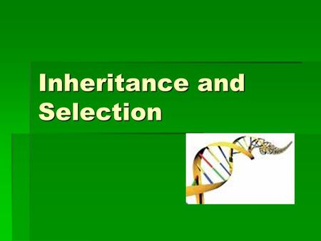 Inheritance and Selection. Which questions can you handle? Select a level. 3 333333 4 44444 555555 666666 777777.