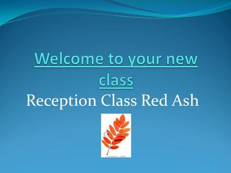 Reception Class Red Ash. Timetable 2013 -2104 MondayTuesdayWednesdayThursdayFriday 8.55 Self register First Activities Self register First Activities.