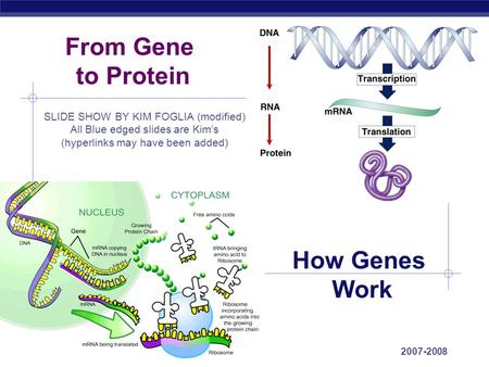 AP Biology 2007-2008 From Gene to Protein How Genes Work SLIDE SHOW BY KIM FOGLIA (modified) All Blue edged slides are Kim's (hyperlinks may have been.