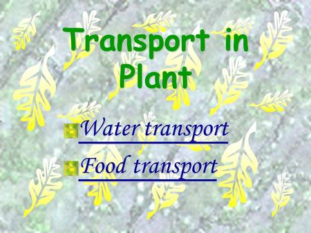 Water transport Food transport