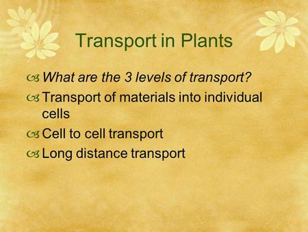 Transport in Plants  What are the 3 levels of transport?  Transport of materials into individual cells  Cell to cell transport  Long distance transport.