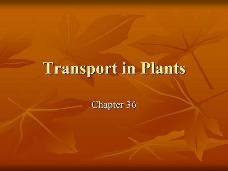Transport in Plants Chapter 36.