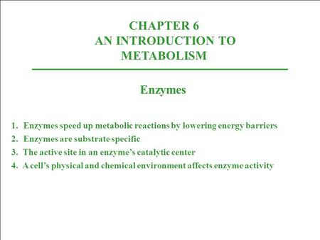 CHAPTER 6 AN INTRODUCTION TO METABOLISM
