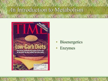 An Introduction to Metabolism Bioenergetics Enzymes.