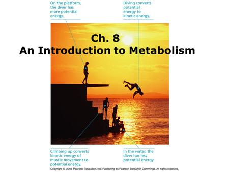 Ch. 8 An Introduction to Metabolism. I.Introduction A.The cell has thousands of chemical reactions occurring within a microscopic space. -Example: Cellular.