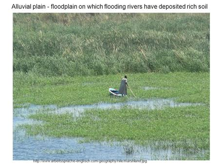 Alluvial plain - floodplain on which flooding rivers have deposited rich soil