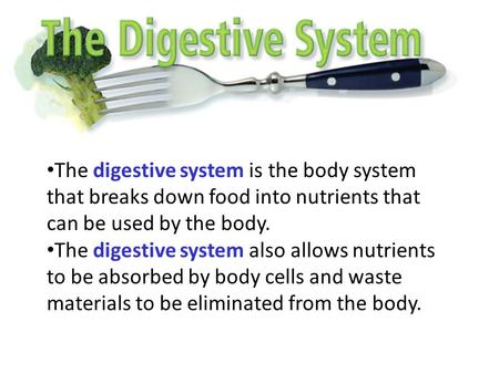 The digestive system is the body system that breaks down food into nutrients that can be used by the body. The digestive system also allows nutrients to.