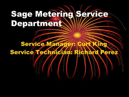Sage Metering Service Department Service Manager: Curt King Service Technician: Richard Perez.