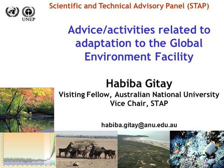Advice/activities related to adaptation to the Global Environment Facility Habiba Gitay Visiting Fellow, Australian National University Vice Chair, STAP.