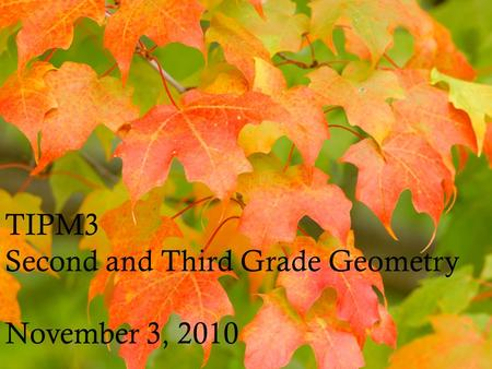 TIPM3 Second and Third Grade Geometry November 3, 2010.