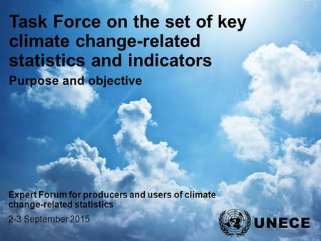 . Task Force on the set of key climate change-related statistics and indicators Purpose and objective Expert Forum for producers and users of climate change-related.