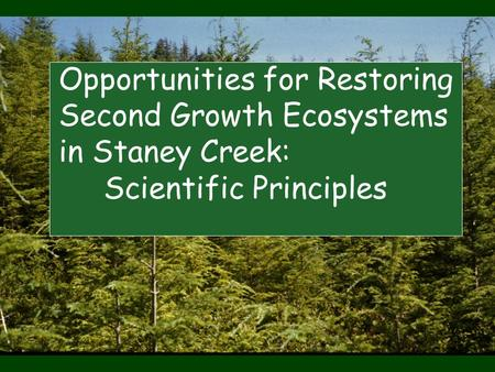 Opportunities for Restoring Second Growth Ecosystems in Staney Creek: Scientific Principles.