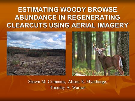 ESTIMATING WOODY BROWSE ABUNDANCE IN REGENERATING CLEARCUTS USING AERIAL IMAGERY Shawn M. Crimmins, Alison R. Mynsberge, Timothy A. Warner.