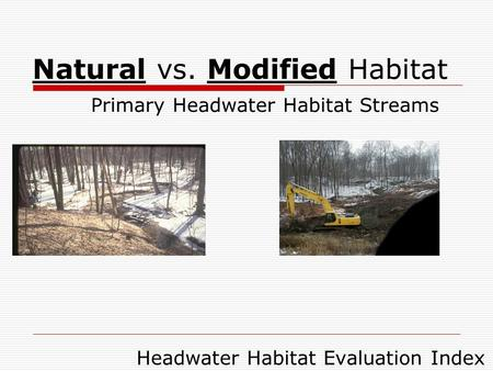 Natural vs. Modified Habitat Primary Headwater Habitat Streams Headwater Habitat Evaluation Index.