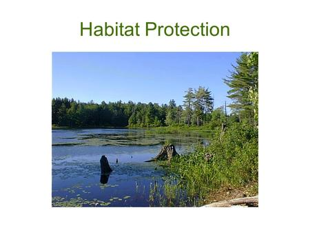 Habitat Protection. Public Benefits of Wildlife Habitat Preservation of Rural Character Hunting, Fishing, and Recreational Economies Ecological Services.
