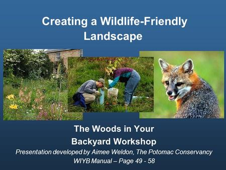 Creating a Wildlife-Friendly Landscape The Woods in Your Backyard Workshop Presentation developed by Aimee Weldon, The Potomac Conservancy WIYB Manual.