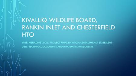 KIVALLIQ WILDLIFE BOARD, RANKIN INLET AND CHESTERFIELD HTO NIRB: MELIADINE GOLD PROJECT FINAL ENVIRONMENTAL IMPACT STATEMENT (FEIS) TECHNICAL COMMENTS.