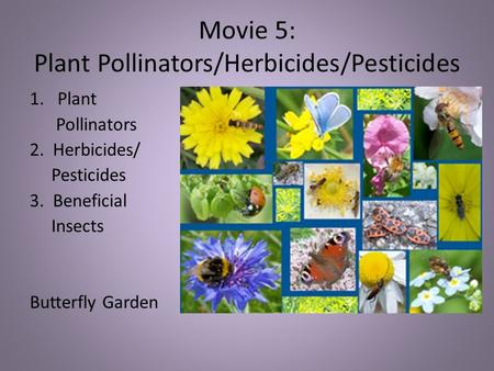 Movie 5: Plant Pollinators/Herbicides/Pesticides 1.Plant Pollinators 2. Herbicides/ Pesticides 3. Beneficial Insects Butterfly Garden.