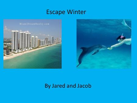 Escape Winter By Jared and Jacob. Location Tunnrberry Isle located in Miami, Florida Downtown Miami Just off HWY A1A Near the shore line Close to many.