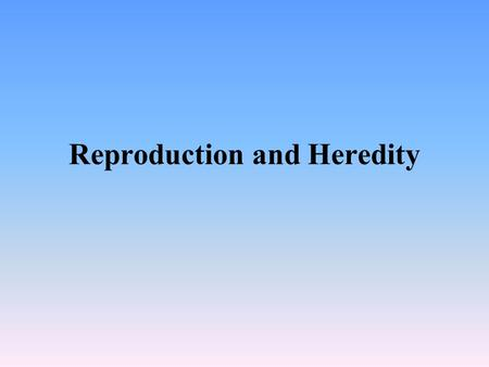 Reproduction and Heredity. Reproduction Reproductive glands Ovaries – Females Testes – Males Controlled by the pituitary gland/ hypothalamus. Repro. Glands.
