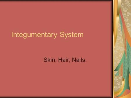 Integumentary System Skin, Hair, Nails..