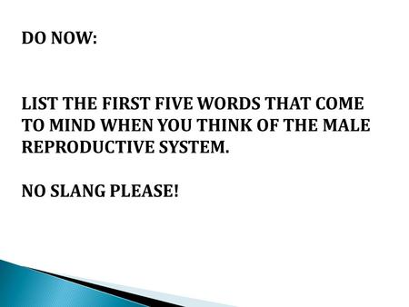 DO NOW: LIST THE FIRST FIVE WORDS THAT COME TO MIND WHEN YOU THINK OF THE MALE REPRODUCTIVE SYSTEM. NO SLANG PLEASE!
