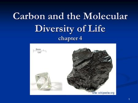 1 Carbon and the Molecular Diversity of Life chapter 4 Site: wikipedia.org.