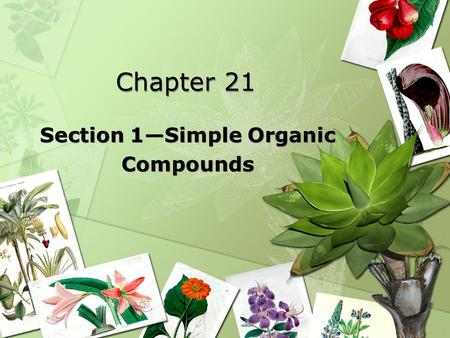 Chapter 21 Section 1—Simple Organic Compounds Section 1—Simple Organic Compounds.