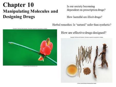 Herbal Remedies versus Modern Medicine