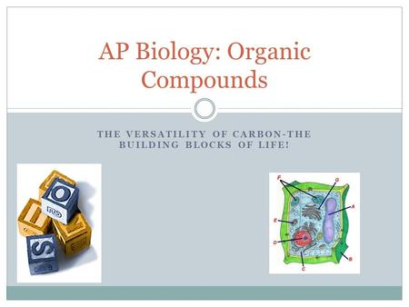 THE VERSATILITY OF CARBON-THE BUILDING BLOCKS OF LIFE! AP Biology: Organic Compounds.