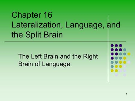 The Left Brain and the Right Brain of Language