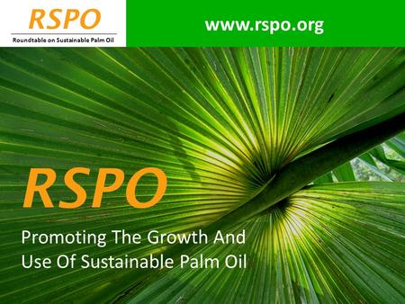 RSPO Roundtable on Sustainable Palm Oil Promoting The Growth And Use Of Sustainable Palm Oil RSPO www.rspo.org.
