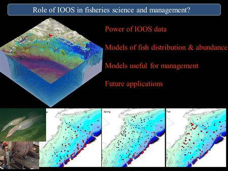 Role of IOOS in fisheries science and management? Power of IOOS data Models of fish distribution & abundance Models useful for management Future applications.