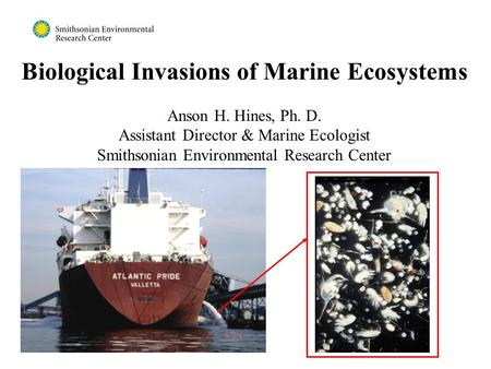 Biological Invasions of Marine Ecosystems Anson H. Hines, Ph. D. Assistant Director & Marine Ecologist Smithsonian Environmental Research Center.