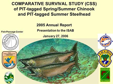 COMPARATIVE SURVIVAL STUDY (CSS) of PIT-tagged Spring/Summer Chinook and PIT-tagged Summer Steelhead 2005 Annual Report Presentation to the ISAB January.