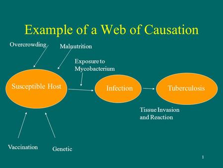 Example of a Web of Causation