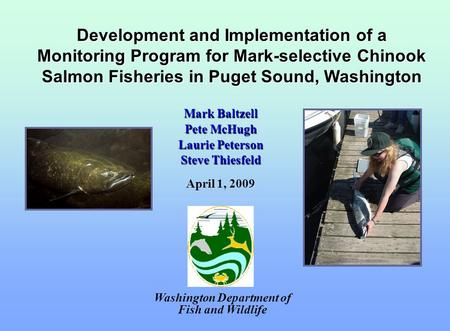 Development and Implementation of a Monitoring Program for Mark-selective Chinook Salmon Fisheries in Puget Sound, Washington Washington Department of.