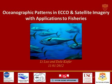 Oceanographic Patterns in ECCO & Satellite Imagery with Applications to Fisheries Li Luo and Dale Kiefer 11/01/2012.