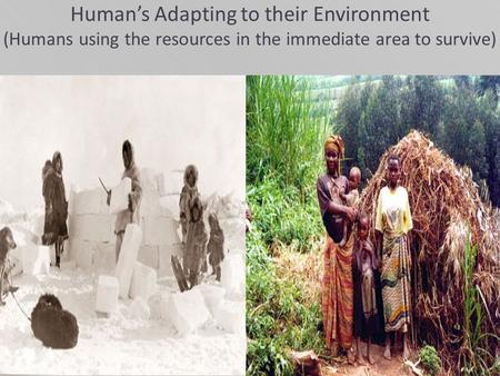Human's Adapting to their Environment (Humans using the resources in the immediate area to survive)