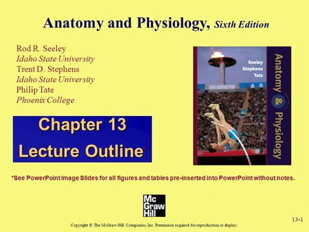 13-1 Anatomy and Physiology, Sixth Edition Rod R. Seeley Idaho State University Trent D. Stephens Idaho State University Philip Tate Phoenix College Copyright.