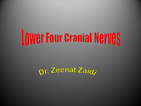 Lower Four Cranial Nerves