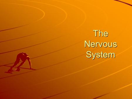 The Nervous System. EQ How does the nervous system work to control and maintain bodily functions and activities?