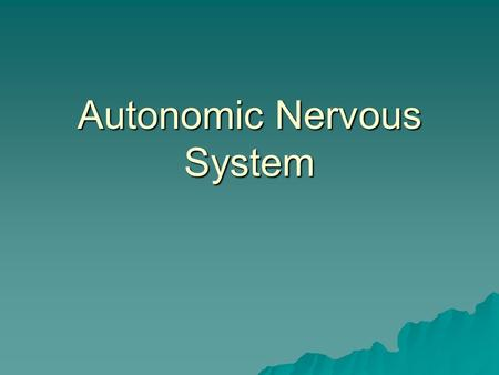 "Autonomic Nervous System. Divisions  Sympathetic: ""Saber tooth Tiger""  All processes speed up except for digestion  Parasympathetic: ""Resting and Digesting"""
