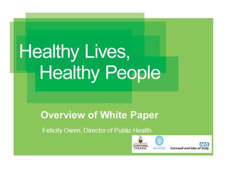 Overview of White Paper Felicity Owen, Director of Public Health.
