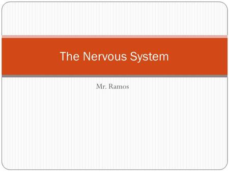 Mr. Ramos The Nervous System. Before We Get Started… Levels of Organization.